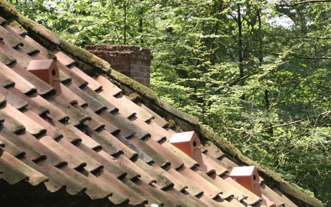 Platzierung auf dem Dach.